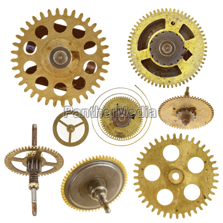 various gears isolated on white