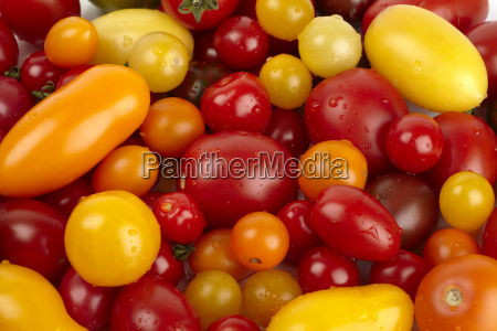 many fresh different organic tomatoes with
