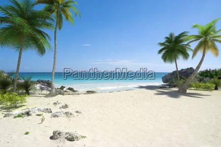 beautiful tropical deserted beach
