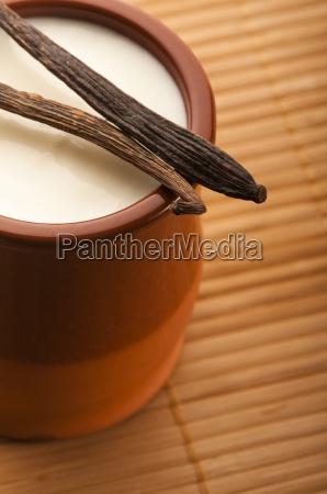 sweet vanilla pudding dessert