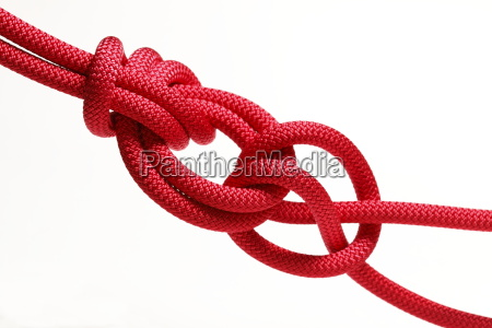 bulin and clove hitch