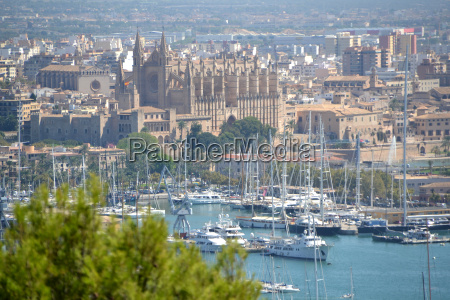 view from above of palma