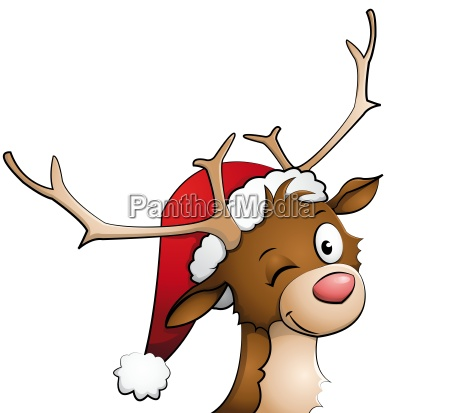 reindeer with santa hat on