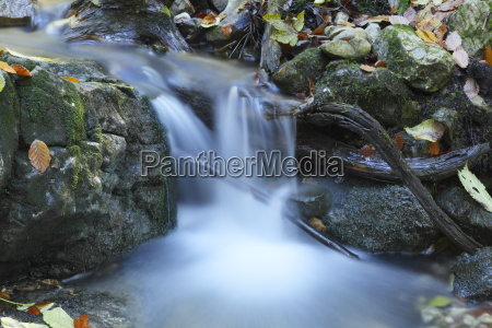 fresh mountain stream