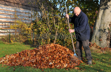 foliage sweep