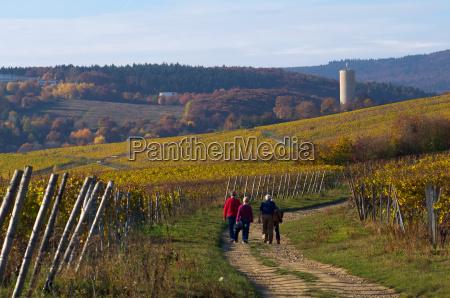 hiking to the scharfenstein ruin