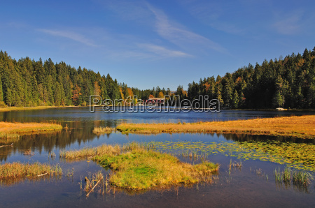 the great arbersee in autumn