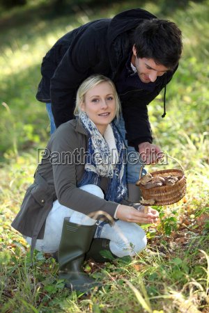 couple picking mushrooms in a forest