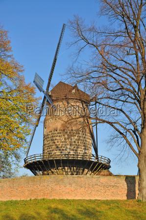 the windmill in the customs
