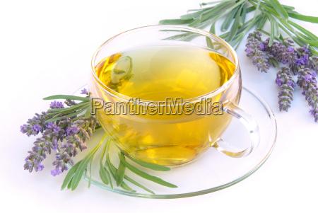 tea lavender lavender tea 06