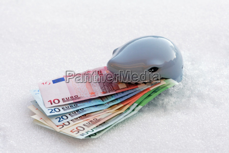 place the euro on ice