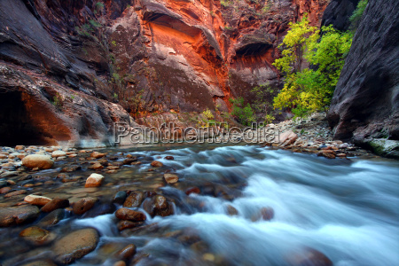 zion, canyon, narrows - 6120790