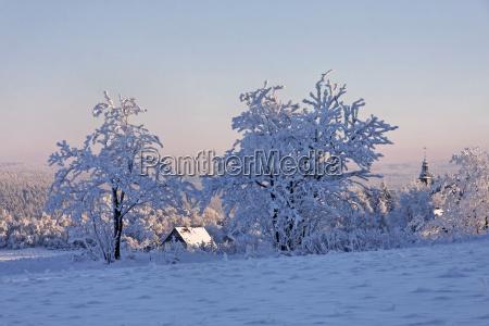 winter ice winter landscape freezes snow