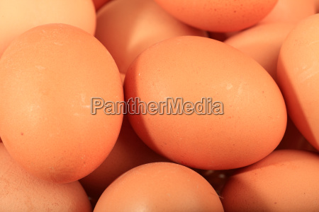 close up of brown chicken eggs