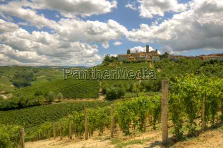 view on vineyards and small town