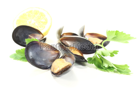 mussels with smooth parsley and lemon