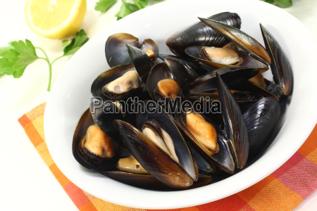fresh mussels in a white bowl