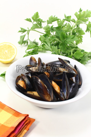 steamed mussels in a dish