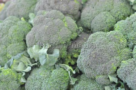 broccoli, vegetables - 6523989