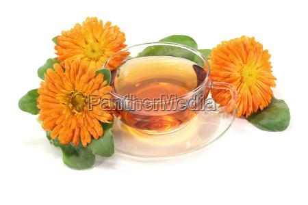 fresh marigold tea