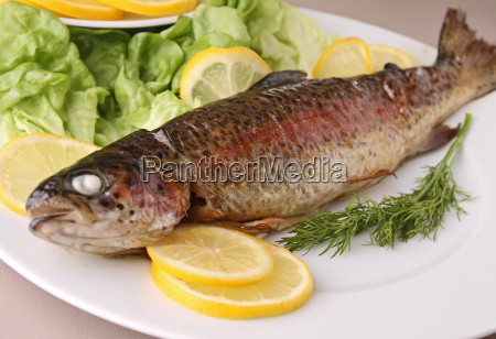 grilled trout on plate