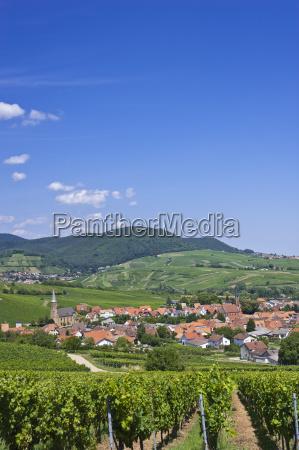 location shot birkweiler