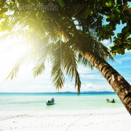 tropical beach in sunny day square