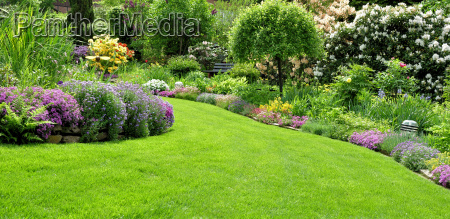 beautiful garden in the spring