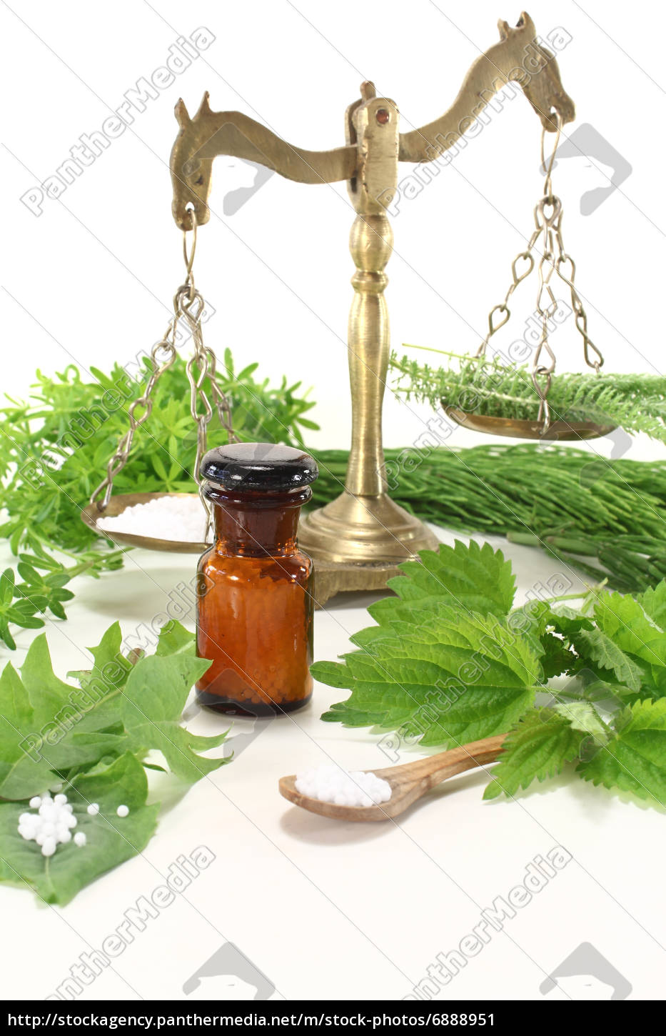 homeopathy, with, herbs - 6888951