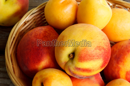 juicy nectarines and apricots in basket