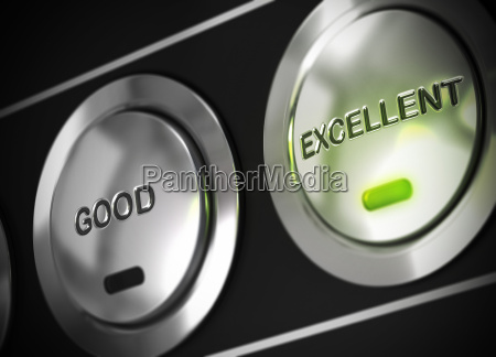 quality rating excellent performance