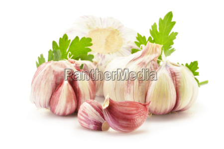 fresh garlic with parsley isolated on