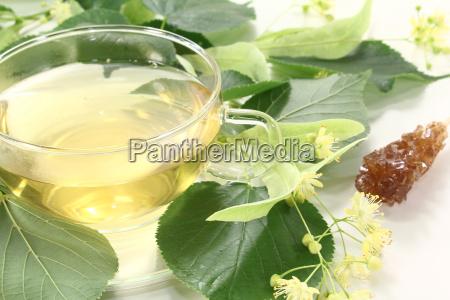 fresh hot lime blossom tea