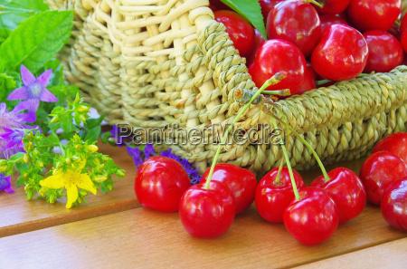 cherries in basket cherries in