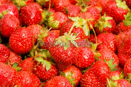 lots of strawberries arranged as the