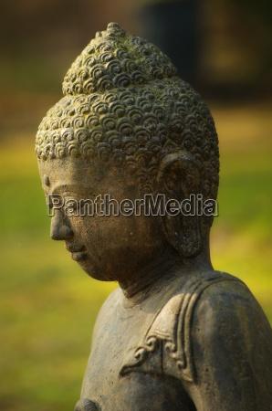 buddha statue head in profile