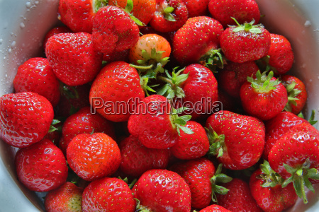 zoomed fresh strawberries places in metal