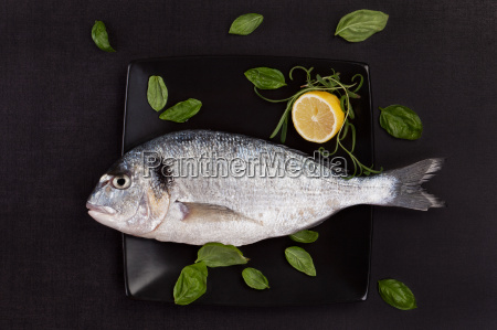 sea bream on plate with herbs