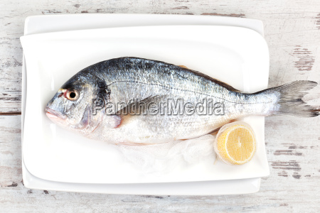 fresh fish on white tray mediterranean