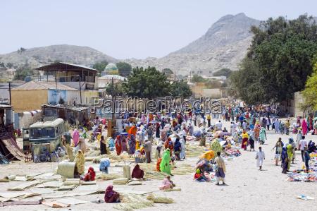 camel market in keren eritrea