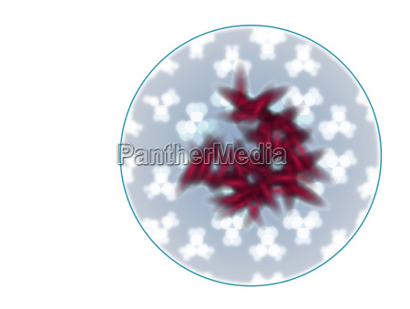 cell particle bacteria graphic