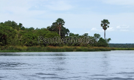 waterside scenery showing the victoria nile