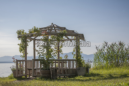 garden foliage on lake chiemsee