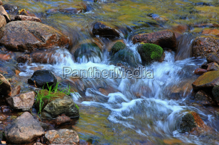 stream torrent clean river water nature