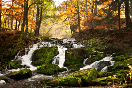 waterfall in autumn light