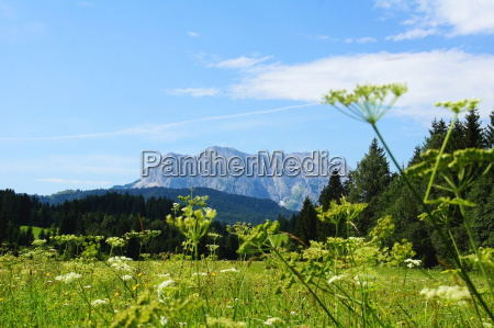 landscape with wetterstein mountains