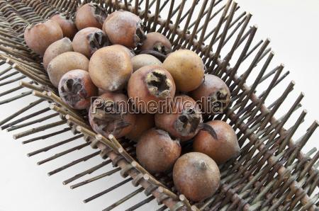 medlar fruits in the fruit basket