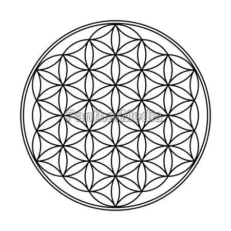flower of life symbol black and