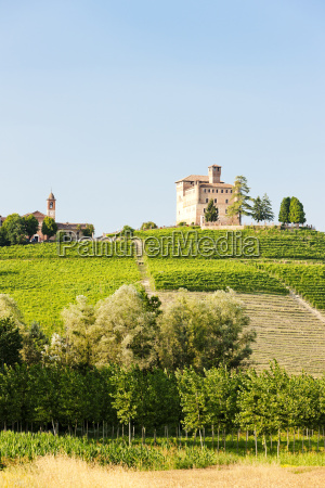 grinzane cavour castle with vineyard piedmont