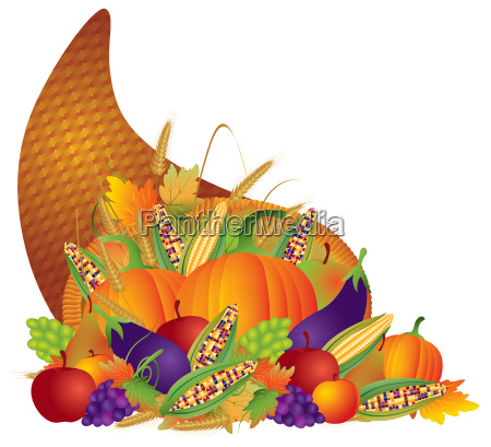 thanksgiving day fall harvest cornucopia illustration